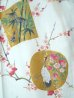 Photo2: Ladies' Japanese Short Happi -kintsuru- White, Cotton, 35in / Beautiful crane (2)