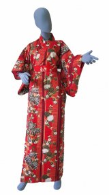 Ladies' Japanese Kimono -shima rangiku- Red, Cotton, Medium / Chrysanth blooming