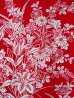 Photo3: Ladies' Japanese Yukata -yuri- Red, Cotton, Small / Lilies (3)